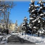 Sofia in de winter